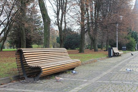 Bench made of wooden bars in a city park Stockfoto - 134871031