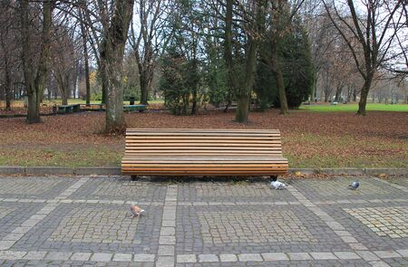 Bench made of wooden bars in a city park Stockfoto - 134871032