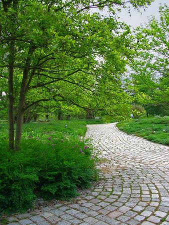 An organic cobblestone path in a park