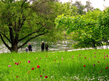 bundesgartenschau: overlooking the meadow there is a  walking along the water in a park Stock Photo