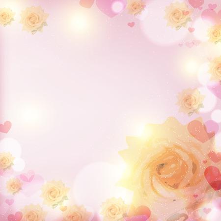rose blanche: rose blanche qui fleurit dans l'�blouissement du soleil sur un backgro rose