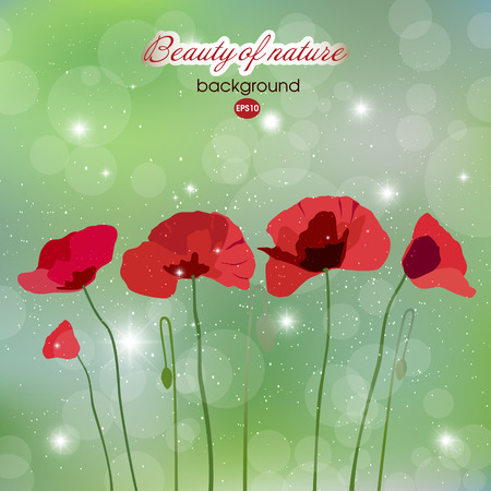 Blooming red flowers on abstract background Illustration