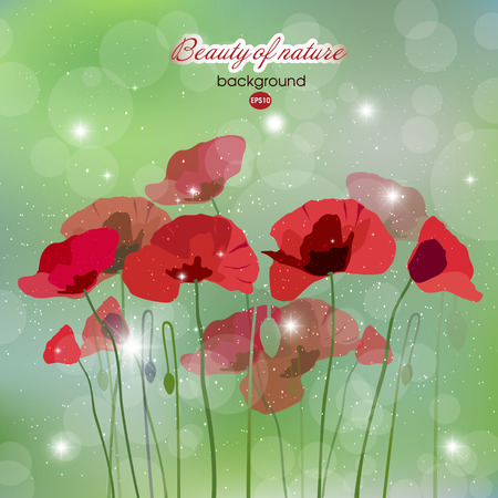 Blooming red flowers at dawn Illustration