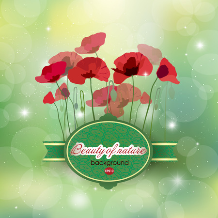 Blooming Poppies on abstract background Illustration