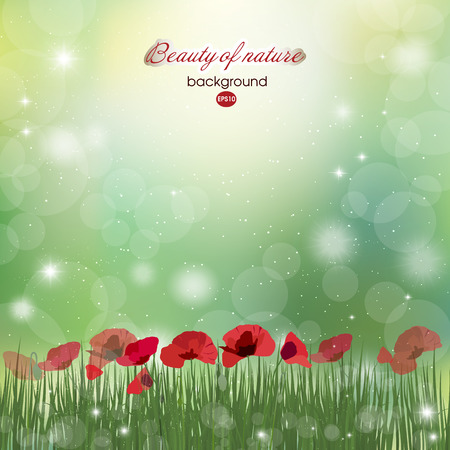 Abstract summer background. Summer. Blooming bright flowers