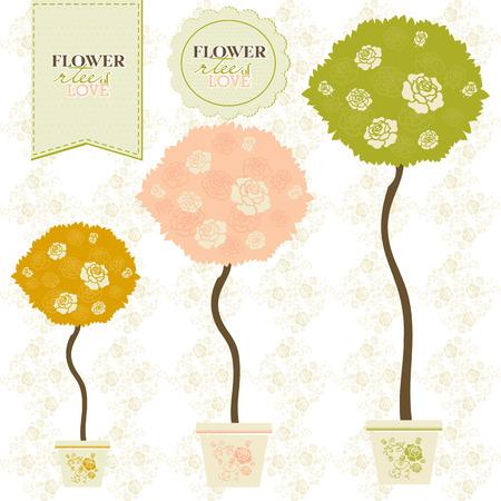 rose flowers: Blooming rose flowers crowns of ornamental trees.