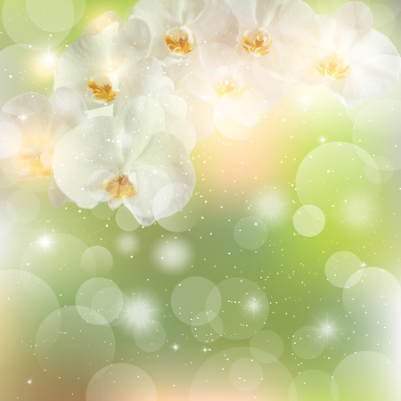 sprig: summer green background with a sprig of white Orchid flowers.