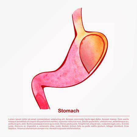 help section: illustration of digestive organ.