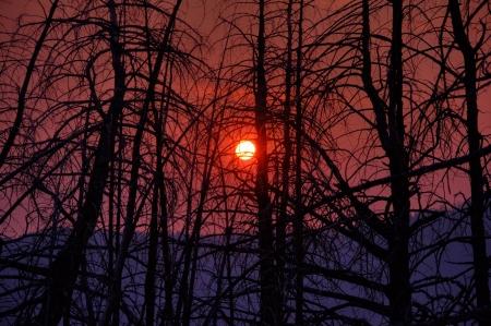 The sun rises through a smokey haze on Elk Mountain, Montana.