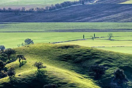 A hillside pasture sits above agricultural fields below in San Jose, California.