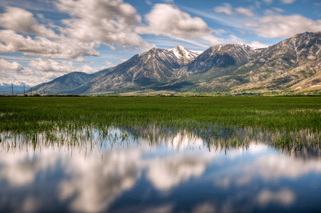 A reflection of Jobs Peak on the green grass of Carson Valley, Nevada  Stock Photo