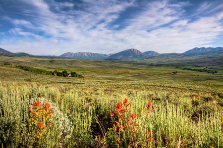 Sage brush and wildflowers decorate the picturesque Colorado valley  Stock Photo