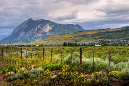 The wildflowers cover the mountains and valleys of picturesque Crested Butte, Colorado