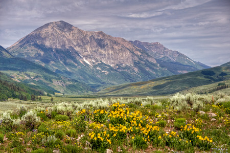 Gothic Mountain rises above a wildflower covered valley, Crested Butte, Colorado