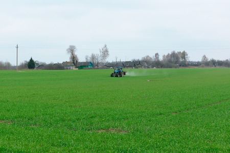 sandhills: the blue tractor with a spray processes a green field for a good harvest Stock Photo