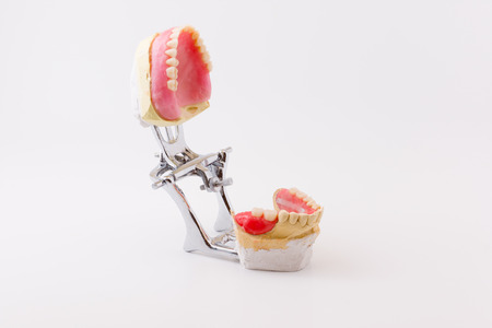 the artificial dentures made in dental laboratory photo