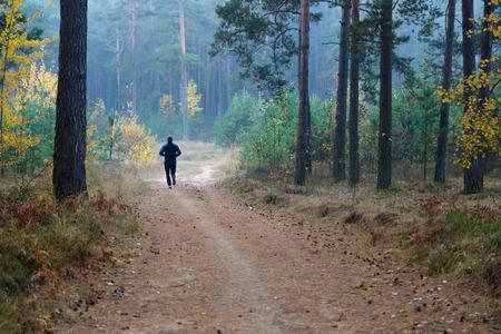 hombre fuerte: el atleta hace footing en el camino a trav�s de la madera de oto�o Foto de archivo