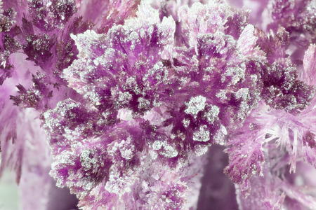 amethyst rough: Purple crystalline formations are photographed close-up