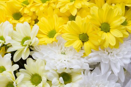 spring big bouquet of yellow and white flowers close up