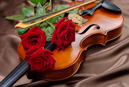 Violin and red roses on a silk background. close up.