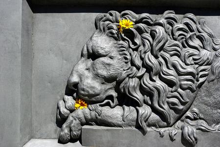 Bas-relief of a lion. lion in architecture.Element of Poltava, Ukraine Stock Photo