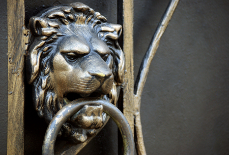 lion head on the gate handle. copy spaces Stockfoto
