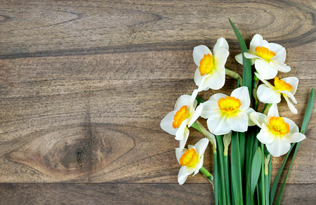 bouquet of narcissus on a wooden table. top view. copy spaces. first spring flowers