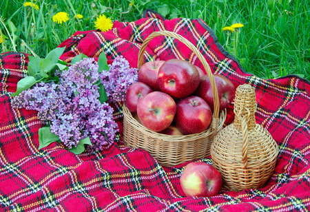 Fresh red apples in a wicker basket in the garden. Picnic on the grass. Ripe apples and a bottle of wine. Flowers