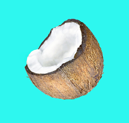 Tropical fruit coconut isolated on a blue