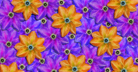 bright colorful ornament of summer flowers. clematis flowers pattern texture background.