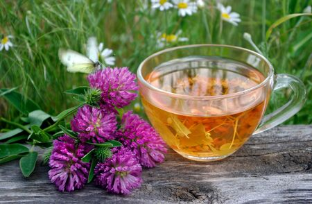 A cup of tea and medicinal herbs on a wooden table. fresh clover, chamomile and linden. herbal tea. flu and cold