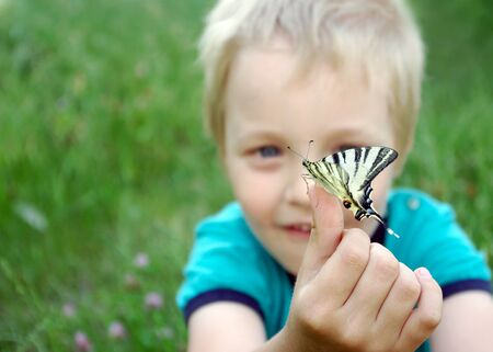 Butterfly sitting on the hand of a child. Child with a butterfly. Butterfly on the hand of a little boy. Selective focus.