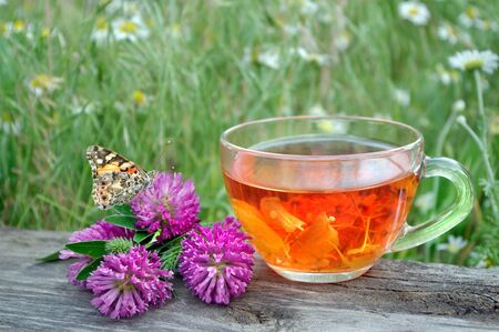 cup of tea flowers herbal tea. remedy for flu and cold