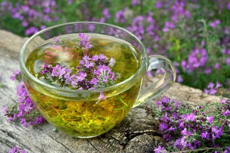 Fresh thyme. Cup of thyme tea on a wooden table. cold and flu remedy