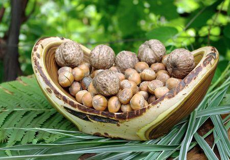 nut harvest. hazelnut and walnut in a wooden bowl. handmade wooden vase 版權商用圖片