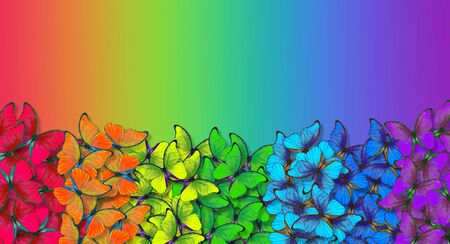 Rainbow spectrum. Colors of rainbow. Pattern of multicolored butterflies morpho texture background. multicolored natural abstract pattern. Copy spaces