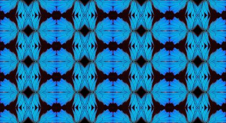 Blue abstract pattern. Wings of the butterfly Ulysses. Ornament from the wings of butterflies.