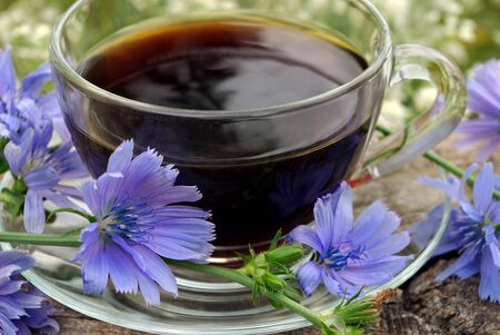 healing drinks. chicory drink. cup of chicory drink and flowers on a wooden table Stockfoto