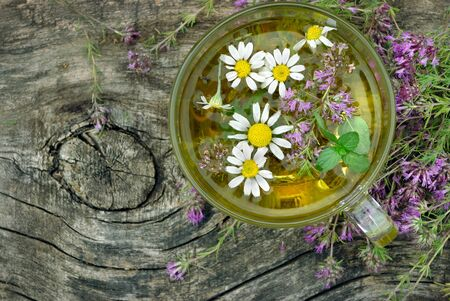 cup of herbal tea on a wooden table. thyme, mint and chamomile tea. alternative medicine. cold and flu remedy Zdjęcie Seryjne