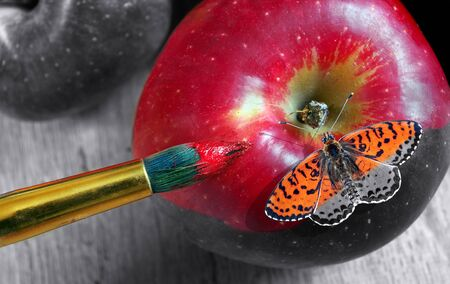 coloring this world. artist brush paints an apple and butterfly. color and shape. red apple close-up.