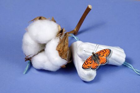 Cotton women's health care, cotton tampon, intimate hygiene, gynecological menstruation cycle. Red butterfly on a cotton tampon. Banco de Imagens