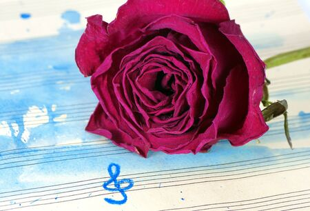 beautiful purple rose on a music sheet. music sheet in blue watercolor paint and treble clef. music concept. dry rose on watercolor background. copy space