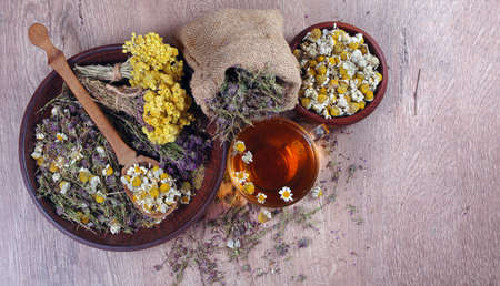 summer medical herbs. cup of thyme tea, dried chamomile and immortelle flowers and echinacea flowers on a wooden table Stock Photo
