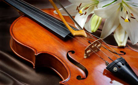 violin and lily on a silk background. close up
