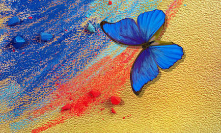 gold and blue background. colorful blue morpho butterfly, blue and red pastels crayons on gold paper