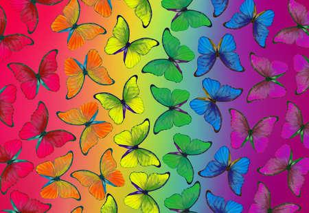Colors of rainbow. Pattern of multicolored morpho butterflies Stock fotó