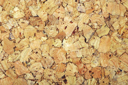 cork wood texture background. top view