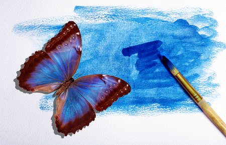 art concept. watercolor paper in blue paint, brush and blue tropical butterfly morpho. Фото со стока