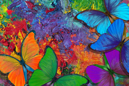 colors of rainbow. color concept. bright tropical morpho butterflies on an artist's palette. art paints and butterflies colorful background Stock fotó