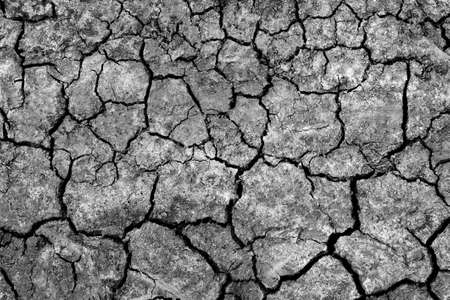 dry cracked earth texture background Stock fotó